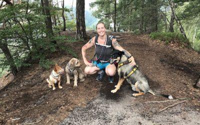 TL-14 Erfolgreich selbstständig als Dogwalkerin – Interview mit Anne Rosengrün