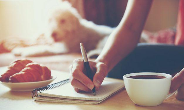 Wie ein Intelligenzspielzeug für meinen Hund mir half, meine Schreibblockade zu lösen