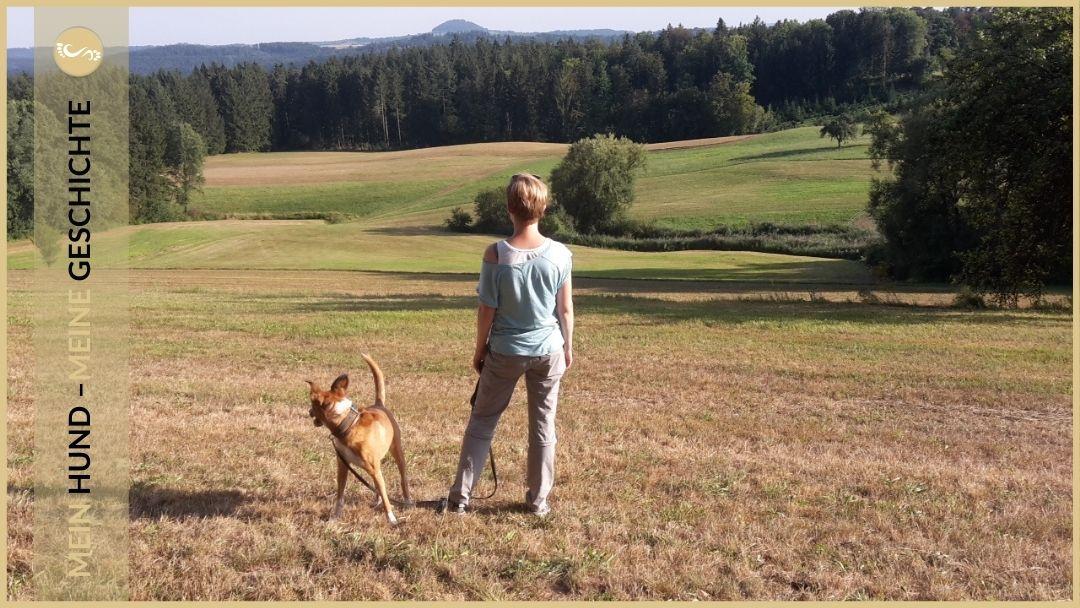 Persönlichkeitsentwicklung mit Hund